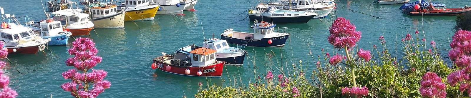 flowers and boats in Newquay