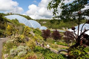 biomes at Eden