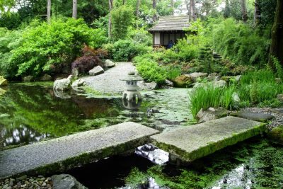 Japanese Garden at Pinetum Gardens